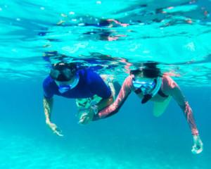 snorkeling-in-bermuda